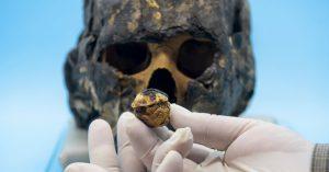 Tomografia da múmia Iret-Neferet. Foto: Bruno Todeschini - PUCRS